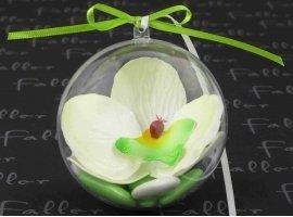 Dragées Mariage - Orchidee anis dans boule plexi avec dragees